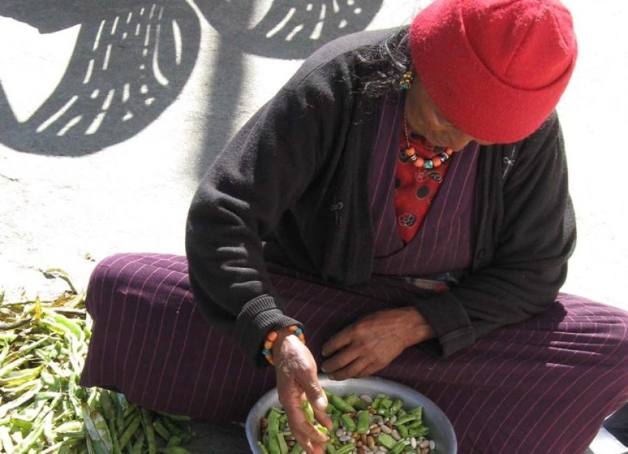 woman-sorting-beans